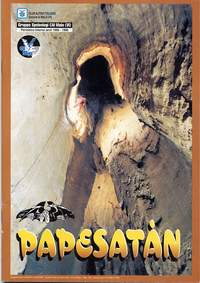 papesatan1995